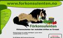 forkonsulenten.com