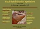 Hoof Rehabilitaion