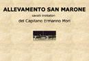 San Marone - travbaner Italia