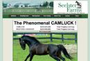 Seelster Farms - avl Canada
