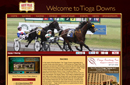 Tioga Downs - travbaner USA